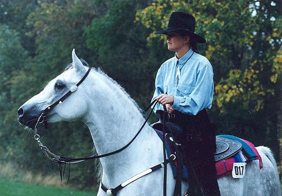 omvendt cowgirl frække oplevelser